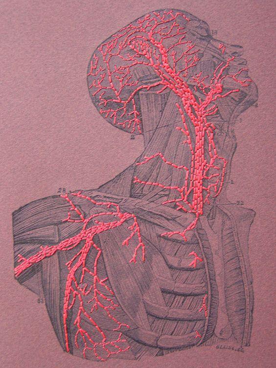 МРТ при заболеваниях
