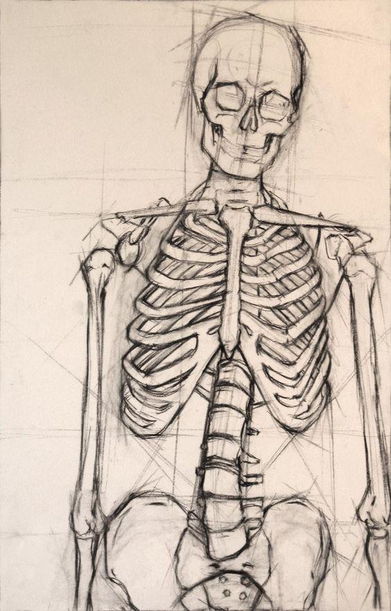 Виды МРТ суставов