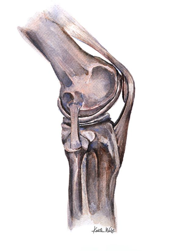 КТ коленного сустава